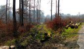 Trail Walk VILLERS-COTTERETS - en forêt de Retz_43_la laie des Pots_1 - Photo 127