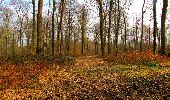 Trail Walk VILLERS-COTTERETS - en forêt de Retz_43_la laie des Pots_1 - Photo 171