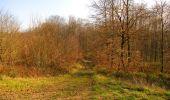 Trail Walk VILLERS-COTTERETS - en forêt de Retz_43_la laie des Pots_1 - Photo 124