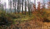 Trail Walk VILLERS-COTTERETS - en forêt de Retz_43_la laie des Pots_1 - Photo 118