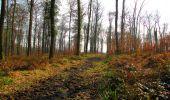Trail Walk VILLERS-COTTERETS - en forêt de Retz_43_la laie des Pots_1 - Photo 167