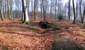 Trail Walk VILLERS-COTTERETS - en forêt de Retz_43_la laie des Pots_1 - Photo 40