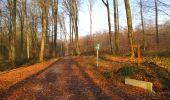 Trail Walk VILLERS-COTTERETS - en forêt de Retz_43_la laie des Pots_1 - Photo 33
