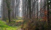 Trail Walk VILLERS-COTTERETS - en forêt de Retz_43_la laie des Pots_1 - Photo 82