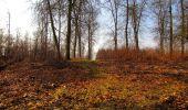 Trail Walk VILLERS-COTTERETS - en forêt de Retz_43_la laie des Pots_1 - Photo 102