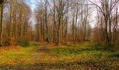 Trail Walk VILLERS-COTTERETS - en forêt de Retz_43_la laie des Pots_1 - Photo 176