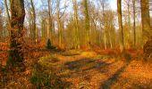Trail Walk VILLERS-COTTERETS - en forêt de Retz_43_la laie des Pots_1 - Photo 172