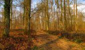 Trail Walk VILLERS-COTTERETS - en forêt de Retz_43_la laie des Pots_1 - Photo 165