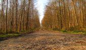 Trail Walk VILLERS-COTTERETS - en forêt de Retz_43_la laie des Pots_1 - Photo 94