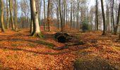 Trail Walk VILLERS-COTTERETS - en forêt de Retz_43_la laie des Pots_1 - Photo 39
