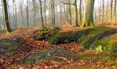 Trail Walk VILLERS-COTTERETS - en forêt de Retz_43_la laie des Pots_1 - Photo 47