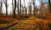 Trail Walk VILLERS-COTTERETS - en forêt de Retz_43_la laie des Pots_1 - Photo 169