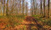 Trail Walk VILLERS-COTTERETS - en forêt de Retz_43_la laie des Pots_1 - Photo 86