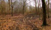 Trail Walk VILLERS-COTTERETS - en forêt de Retz_43_la laie des Pots_1 - Photo 156