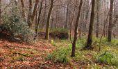 Trail Walk VILLERS-COTTERETS - en forêt de Retz_43_la laie des Pots_1 - Photo 114