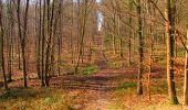 Trail Walk VILLERS-COTTERETS - en forêt de Retz_43_la laie des Pots_1 - Photo 89