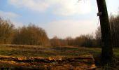 Trail Walk VILLERS-COTTERETS - en forêt de Retz_43_la laie des Pots_1 - Photo 132