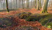 Trail Walk VILLERS-COTTERETS - en forêt de Retz_43_la laie des Pots_1 - Photo 48