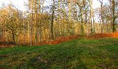 Trail Walk VILLERS-COTTERETS - en forêt de Retz_43_la laie des Pots_1 - Photo 11