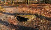 Trail Walk VILLERS-COTTERETS - en forêt de Retz_43_la laie des Pots_1 - Photo 53
