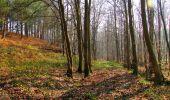 Trail Walk VILLERS-COTTERETS - en forêt de Retz_43_la laie des Pots_1 - Photo 91