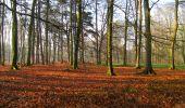 Trail Walk VILLERS-COTTERETS - en forêt de Retz_43_la laie des Pots_1 - Photo 35
