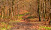 Trail Walk VILLERS-COTTERETS - en forêt de Retz_43_la laie des Pots_1 - Photo 145