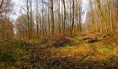 Trail Walk VILLERS-COTTERETS - en forêt de Retz_43_la laie des Pots_1 - Photo 149