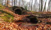 Trail Walk VILLERS-COTTERETS - en forêt de Retz_43_la laie des Pots_1 - Photo 46