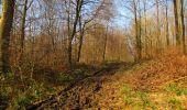 Trail Walk VILLERS-COTTERETS - en forêt de Retz_43_la laie des Pots_1 - Photo 76