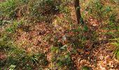 Trail Walk VILLERS-COTTERETS - en forêt de Retz_43_la laie des Pots_1 - Photo 110