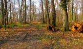 Trail Walk VILLERS-COTTERETS - en forêt de Retz_43_la laie des Pots_1 - Photo 175