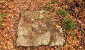 Trail Walk VILLERS-COTTERETS - en forêt de Retz_43_la laie des Pots_1 - Photo 187