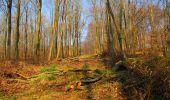 Trail Walk VILLERS-COTTERETS - en forêt de Retz_43_la laie des Pots_1 - Photo 77