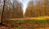 Trail Walk VILLERS-COTTERETS - en forêt de Retz_43_la laie des Pots_1 - Photo 93