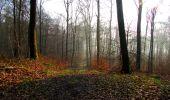 Trail Walk VILLERS-COTTERETS - en forêt de Retz_43_la laie des Pots_1 - Photo 30
