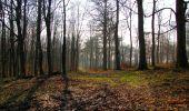 Trail Walk VILLERS-COTTERETS - en forêt de Retz_43_la laie des Pots_1 - Photo 101