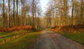 Trail Walk VILLERS-COTTERETS - en forêt de Retz_43_la laie des Pots_1 - Photo 16