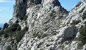 Trail Walk PUYLOUBIER - traversée St Ser, le pic des Mouches, Puyloubier - Photo 3