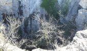 Trail Walk PUYLOUBIER - traversée St Ser, le pic des Mouches, Puyloubier - Photo 2
