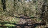 Trail Walk Clavier - Ocquier  boucle bucolique - Photo 13