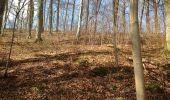 Trail Walk Clavier - Ocquier  boucle bucolique - Photo 10
