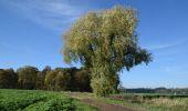 Randonnée Marche Fosses-la-Ville - RF-Na-06-Bambois_Grande-boucle - Photo 3