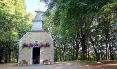 Randonnée Marche Tellin - Bure - Promenade des chapelles - Photo 2