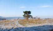 Randonnée V.T.T. Viroinval - Ronde du Viroin par raccourci (Nismes - Olloy sur Viroin) - Photo 7