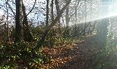 Trail Walk Hamois - NATOYE - Photo 8
