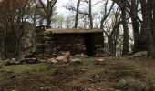 Trail Walk ARGELES-SUR-MER - Tour de la Massane-Cabane des Colomates - Photo 6
