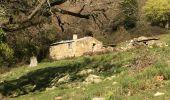 Trail Walk ARGELES-SUR-MER - Tour de la Massane-Cabane des Colomates - Photo 4