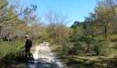 Trail Mountain bike GUJAN-MESTRAS - 2016-04-18 La Hume - les Gaillouneys - Photo 6