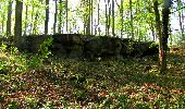 Trail Walk LONGPONT - en forêt de Retz_45_Longpont_la Pierre Fortiere_AR - Photo 108